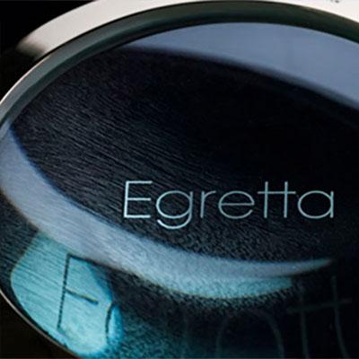 Egretta